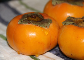 (c) HMFG copyright 2016 persimmons