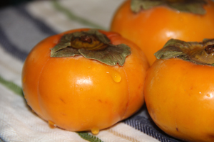 The persimmon, what is it and how to use it